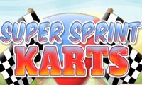 Click Here to Play Super Sprint Karts !