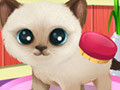 Play Paws to Beauty 3: Puppies & Kittens