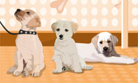 Puppies Galore Dress Up
