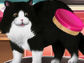 Play Paws to Beauty 2