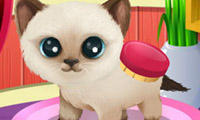 Juegos Paws to Beauty 3: Puppies &…